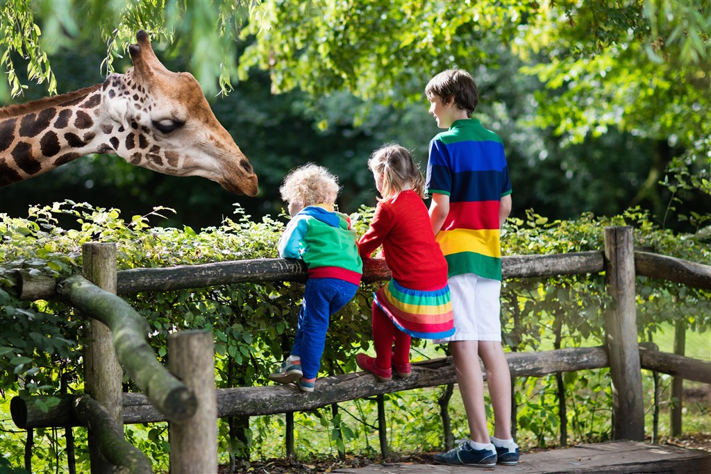Zoo v Lipsku -