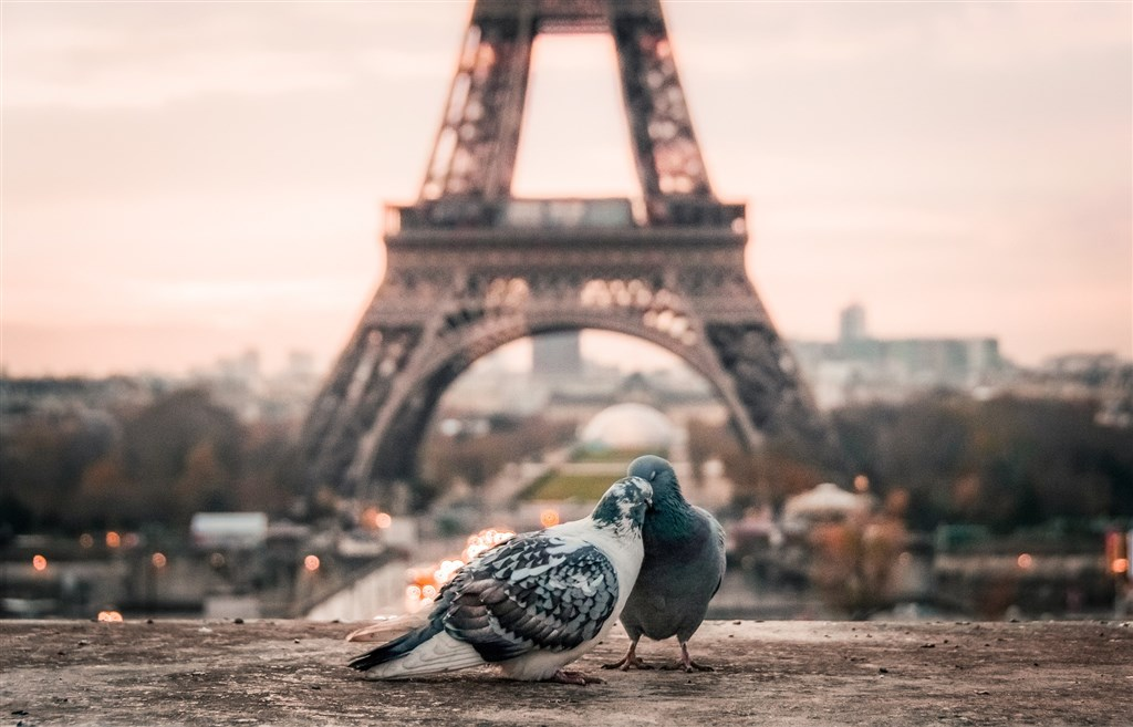 Valentýnská Paříž s dárkem pro zamilované -