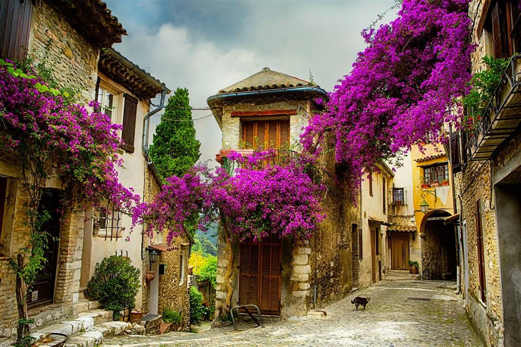 Návštěva Provence s vůní levandule -