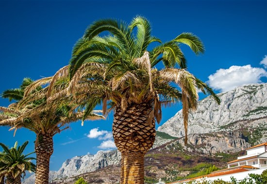 Jednodenní koupání Makarska -